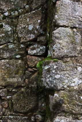 Toco as pedras antigas