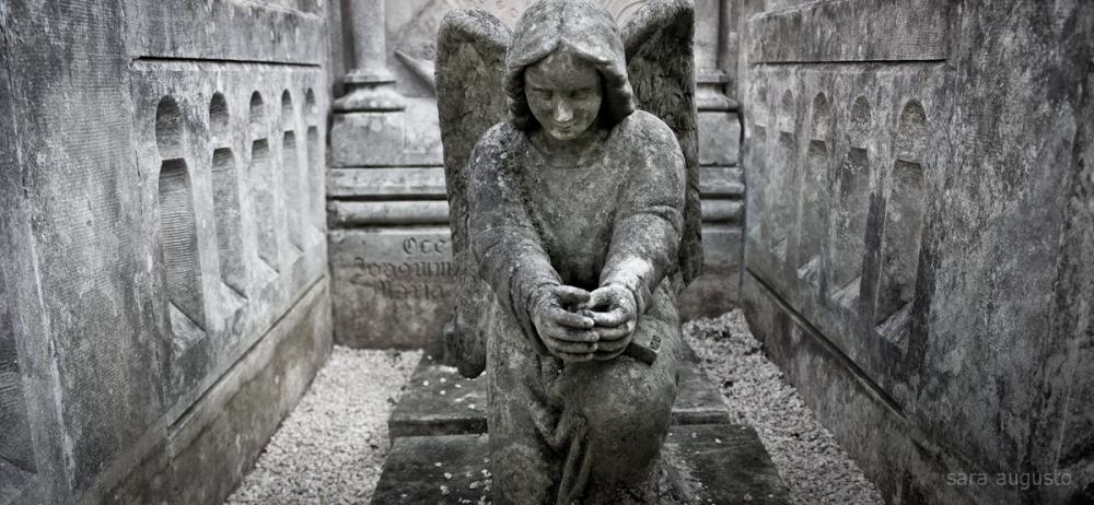 Porque é assim que os anjos morrem. Quando querem morrer.