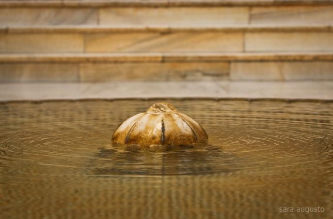 La Alhambra sara augusto 19