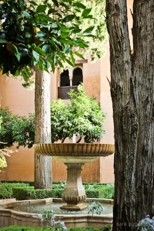 La Alhambra sara augusto 36