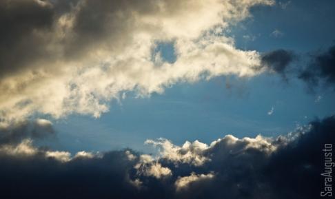 skyfall sara augusto 2