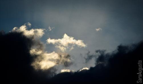 skyfall sara augusto 4
