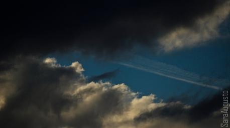 skyfall sara augusto 5